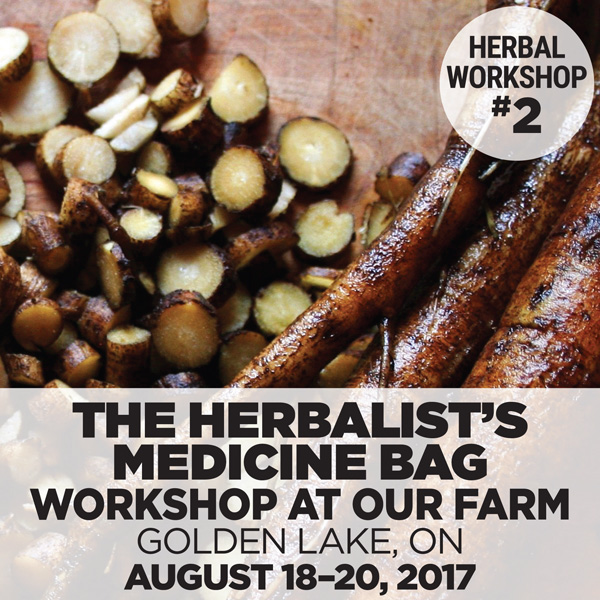 The Herbalist's Medicine Bag at the Sacred Gardener