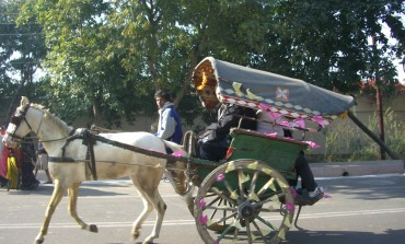 Decoding India's passenger conveyance: From Traditional Horse Carriages To Modern-Day fleet cabs, radio taxis and rental cars