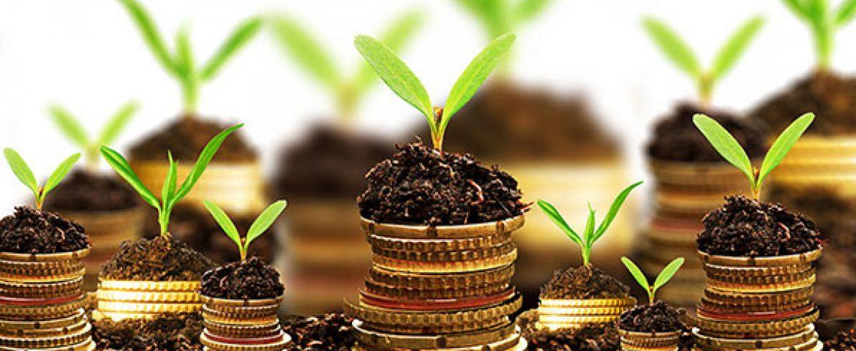 Gurgaon Based RenewBuy Bags $9.2 Mn From Amicus Capital
