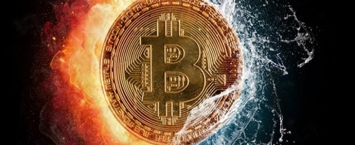 Cryptocurrency Bitcoin Falls Below $8000