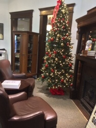 Lit Christmas tree in library