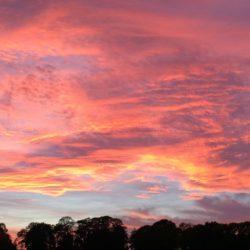 Evolving Sunset