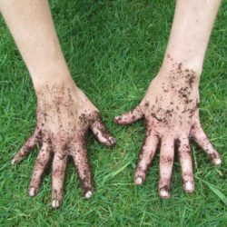 My Dirty Hands