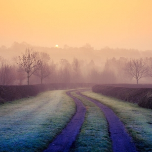 Sunrise by Barbara Jackson