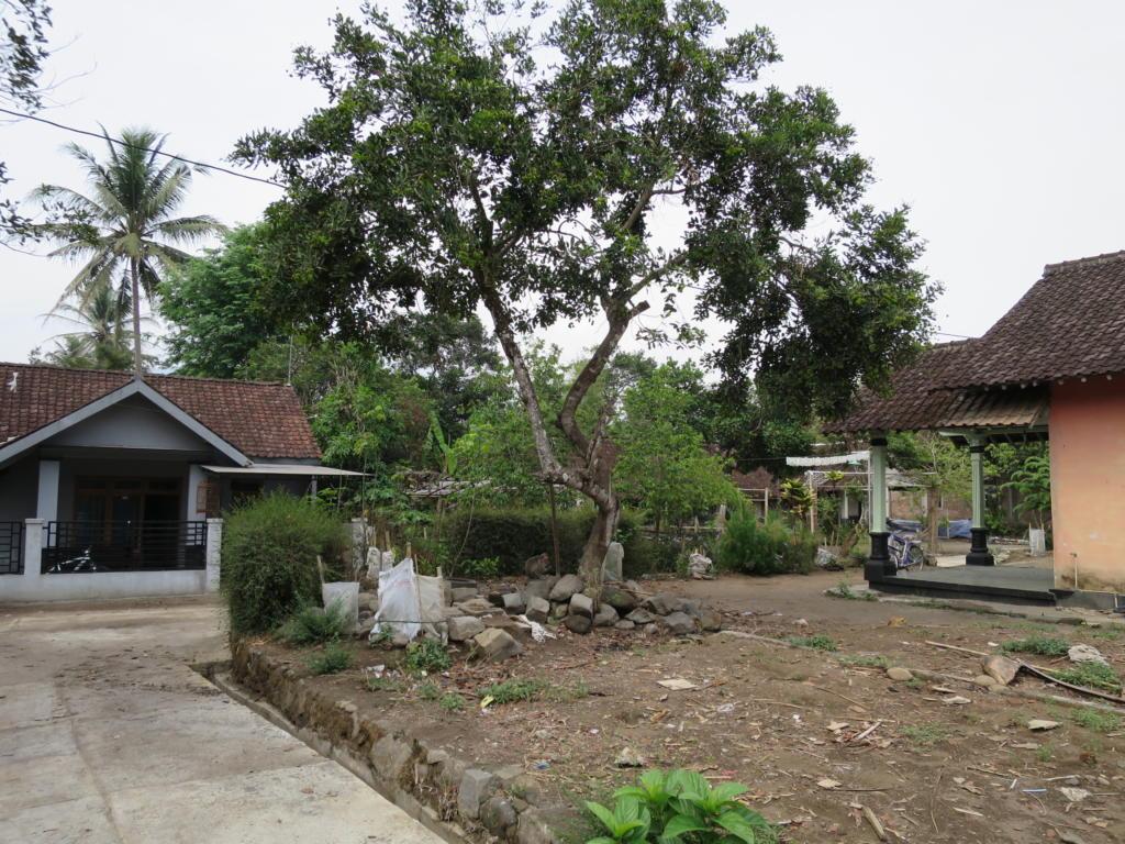 Mendut, Pawon and Tempeh: What's Around Borobudur