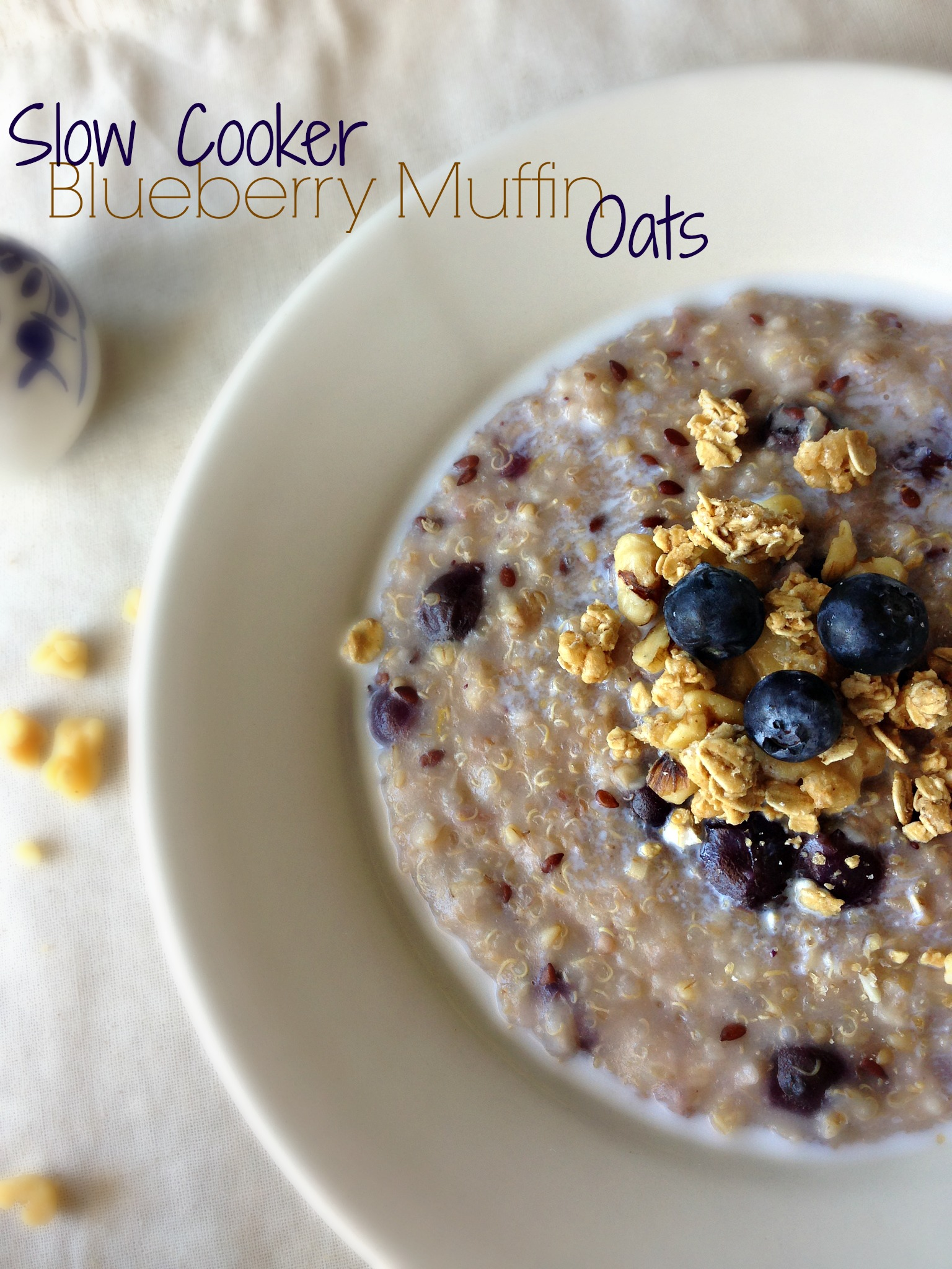 Slow Cooker Blueberry Muffin Oats