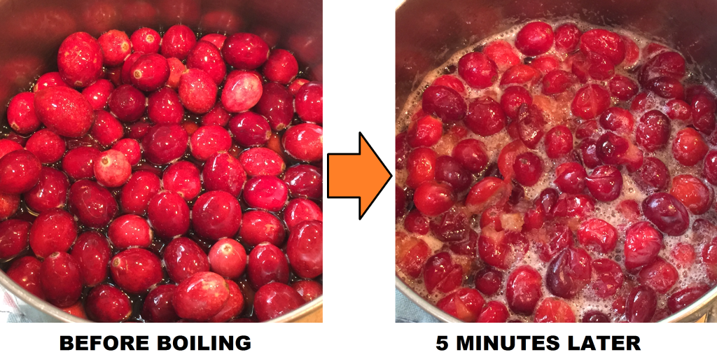 CRANBERRIES BOILING