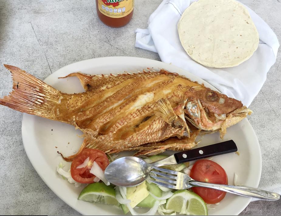 chamicos fish