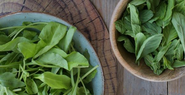 איך כדאי לשמור עלים ירוקים במקרר - טיפים פרקטיים - EshetStyle (צילום: טליה הדר)