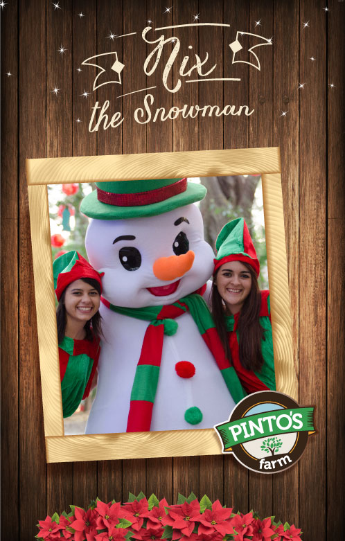 the snowman at the winterland