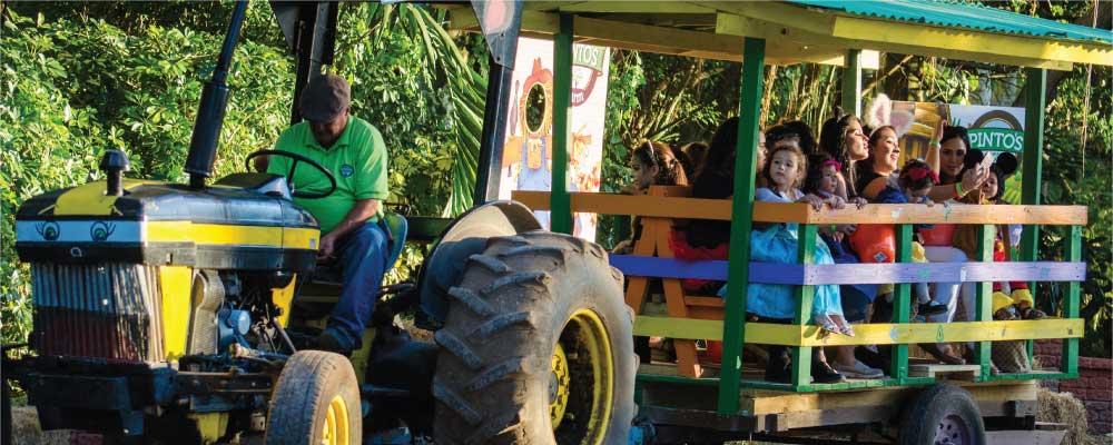 hay rides at the pintos farm
