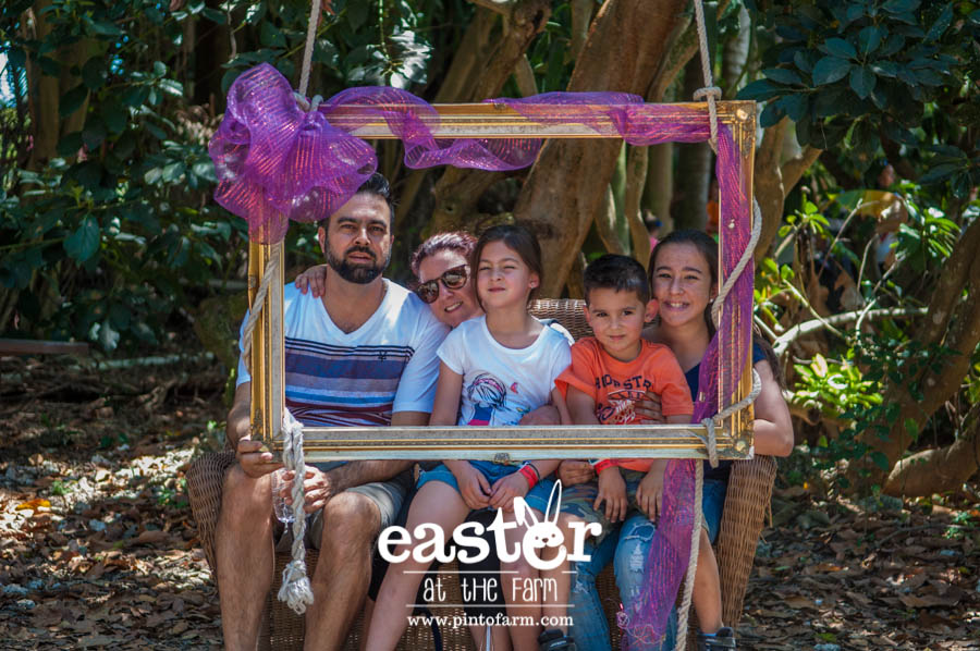 Easter at the Farm, Pinto's Farm
