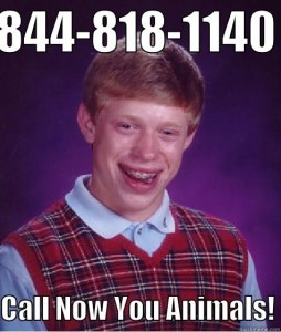Call Now