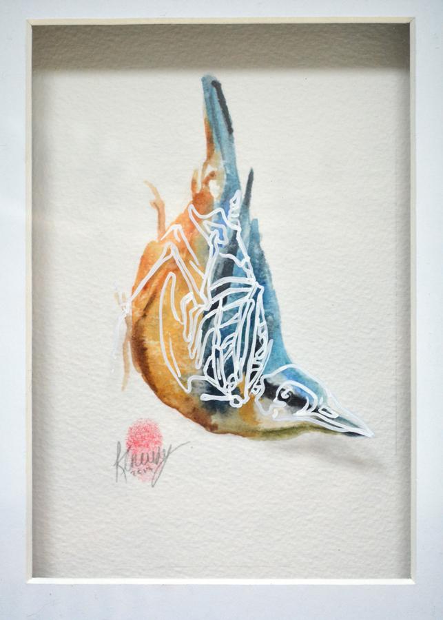 Nuthatch Bird Skeleton Painting