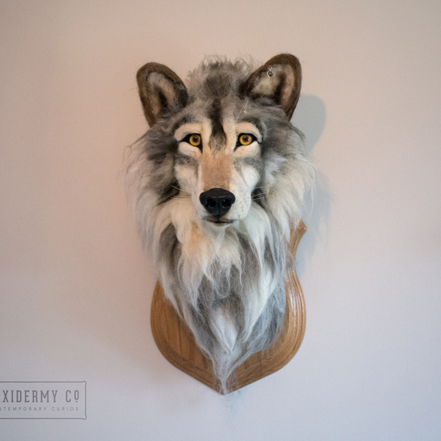 Faux Taxidermy Wolf