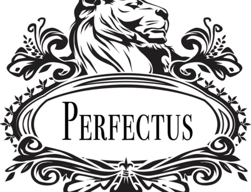 Perfectus LLC