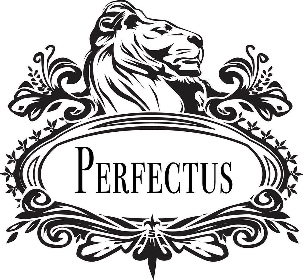 Perfectus logo