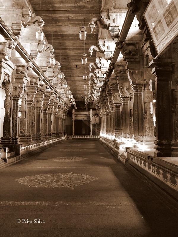 nataraja temple chidambaram