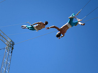 Gorilla Circus Flying Trapeze