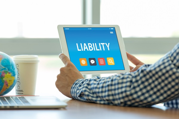 Director and Officer Liability in the Corporation