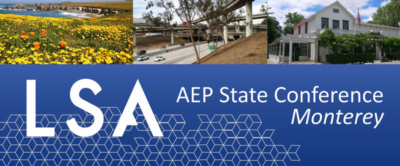 LSA At The 2019 AEP State Conference