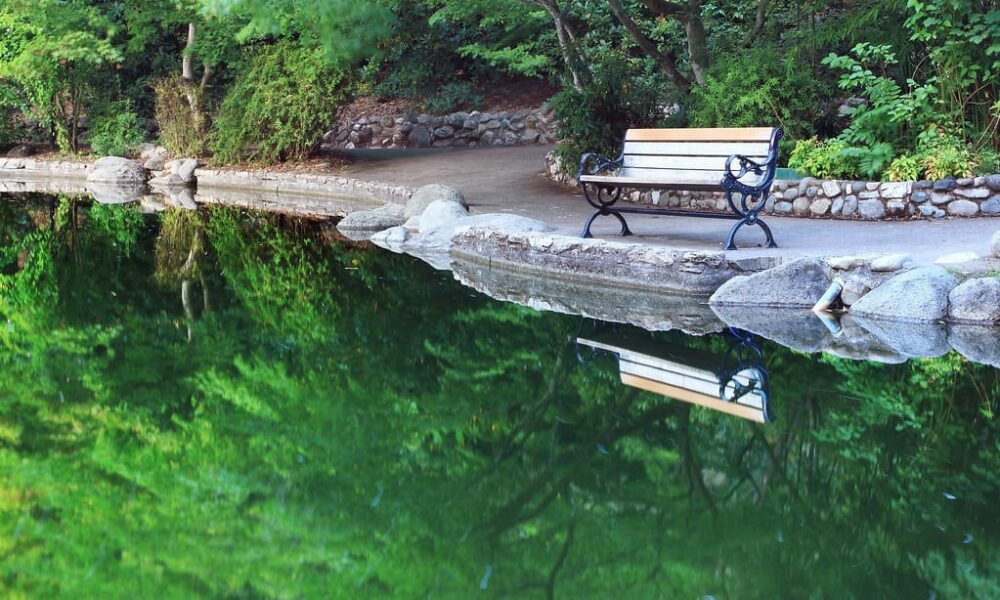 Take a stroll through Lithia Park in downtown Ashland, Oregon