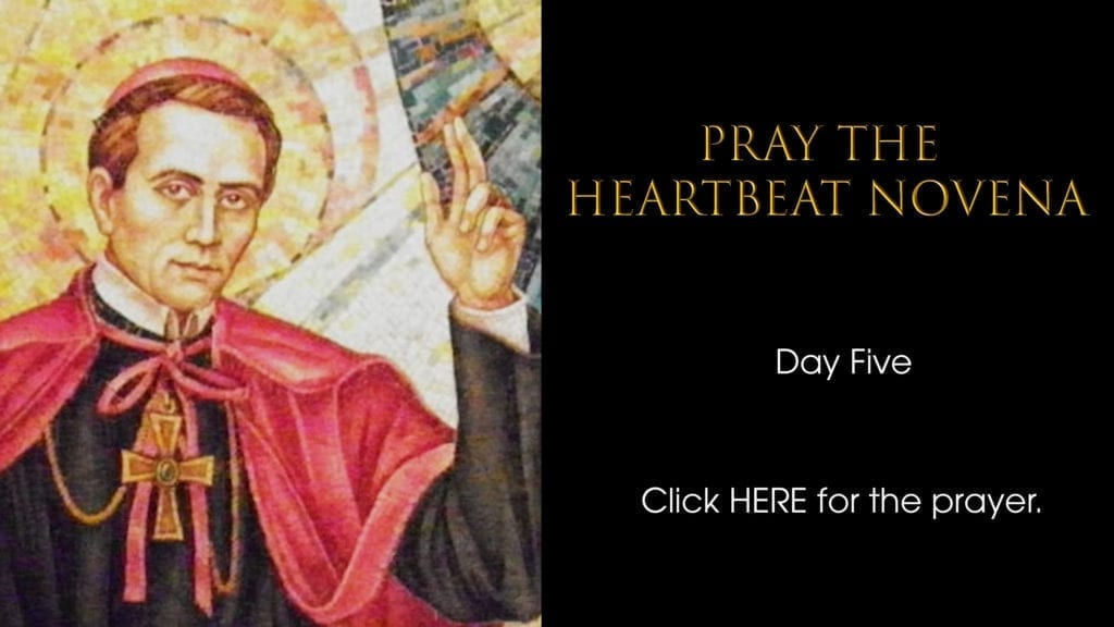 Heartbeat Novena day five