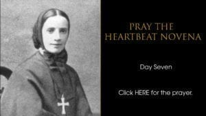 Heartbeat Novena day seven
