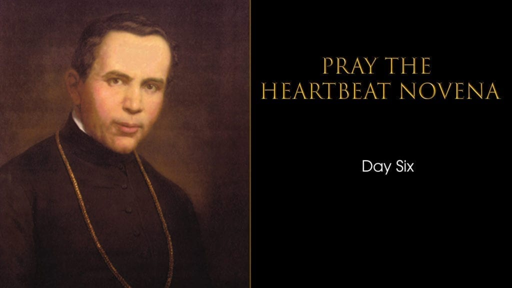 Heartbeat Novena day six