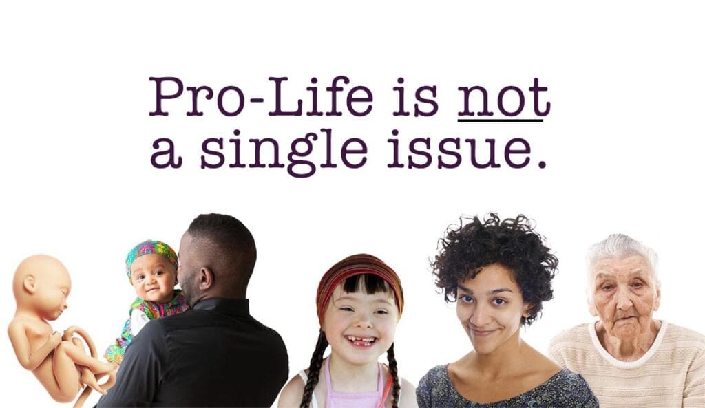 single issue pro-life voter
