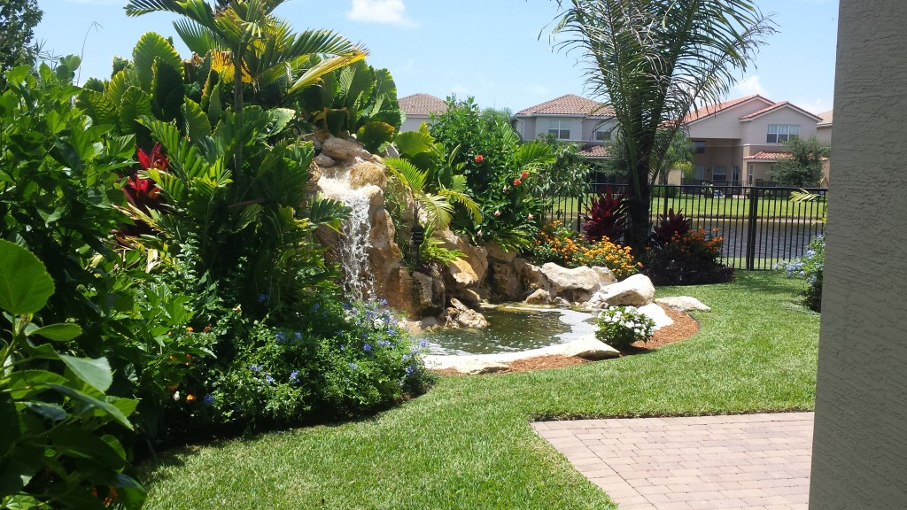 xero lot line landscape and waterfall backyard makeover, boynton beach, canyons 1, after photo 2