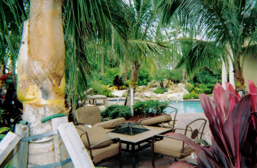 tropical landscape & new rock waterfall for backyard swimming pool area