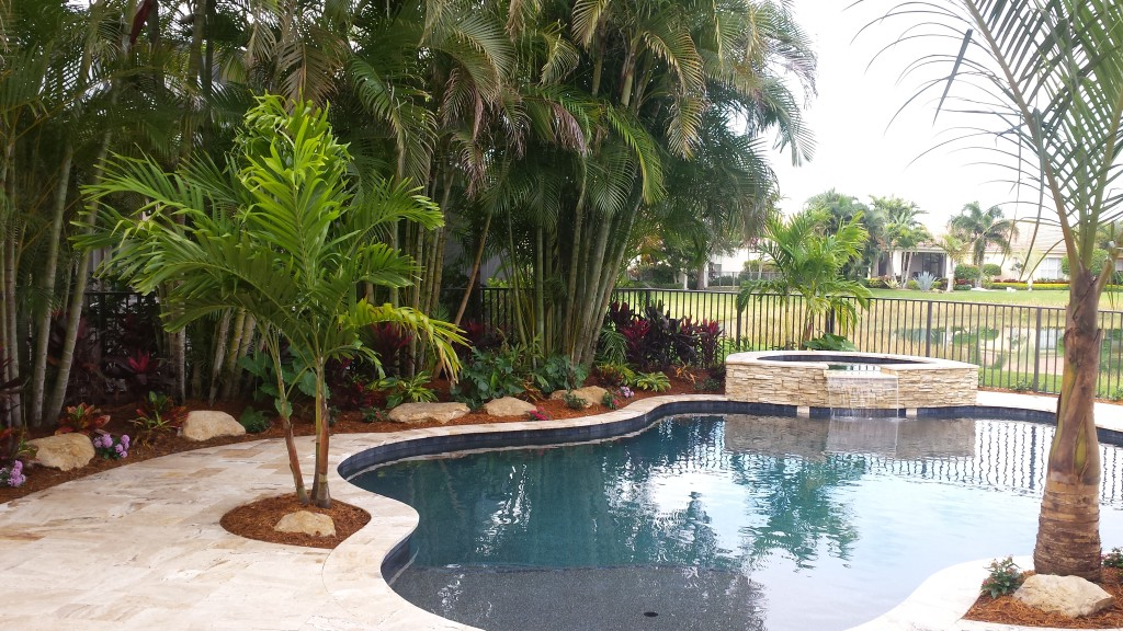 new swimming pool and landscape, palm beach gardens