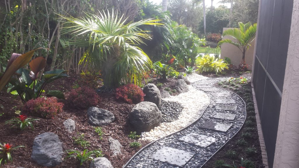 This xero lot line home with a very small backyard, approximately 12' in depth was a blank slate with drainage issues when we began. Our customers loved the look of different types of stones and to help make the area stand out, we used the boulders (faux feather rock) as in the photo above to help us create elevations to make the area more appealing than a flat slate landscape. The use of an Old Man Palm in the center elevated area with the use of Mexican Beach Pebble below and a colorful mixture of plantings helped us to create a centerpiece in an area which had no stand out features to it before. Black (black, grey slate stone was used with black paver steps to lead through the garden. White Polar stone was used as an accent as well to add contrast at points along the path.