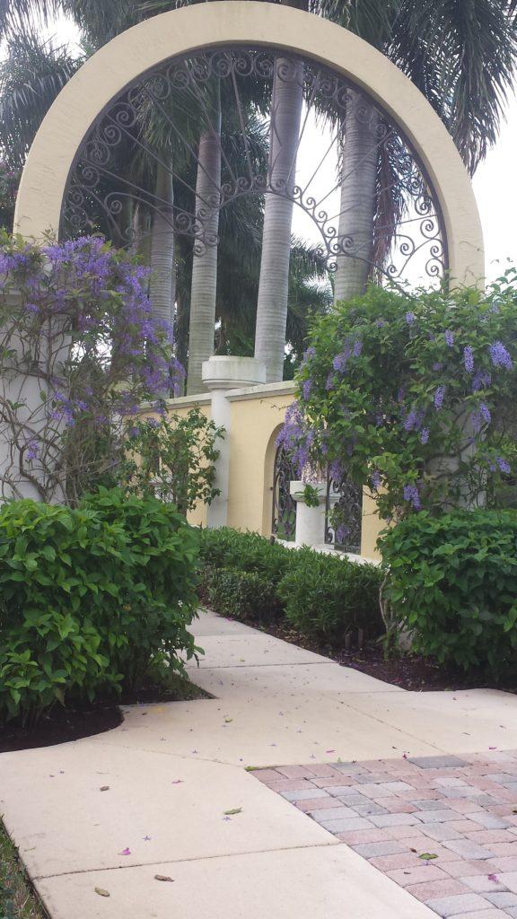 Petria vine framing covered entry.