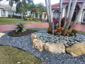 L:andscape Renovation for a driveway center island in west palm beach