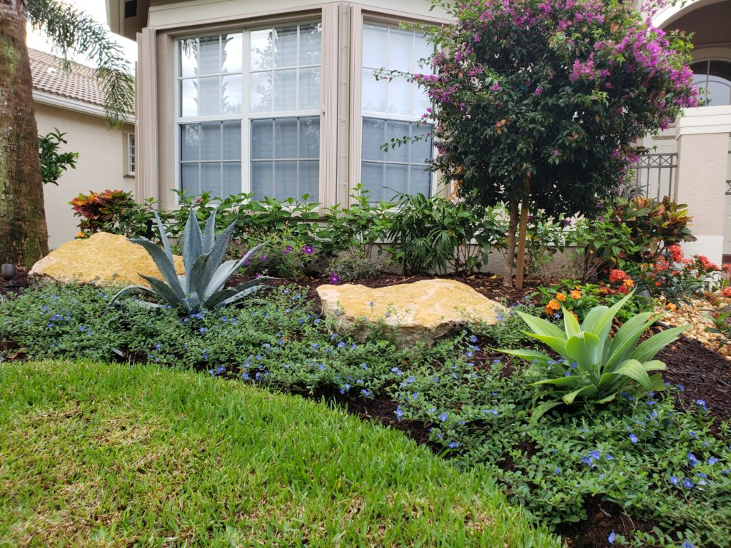 Front Yard Landscape Makeover with boulders elevations ground covers and colorful accents