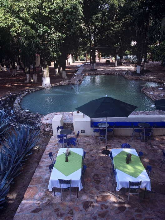 Alberca fuente de Hacienda Tequilera