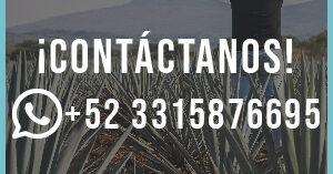 contacto_whatsapp