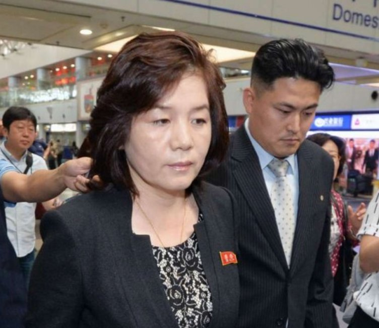 North Korea's Choe Son Hui is a caustic bitch