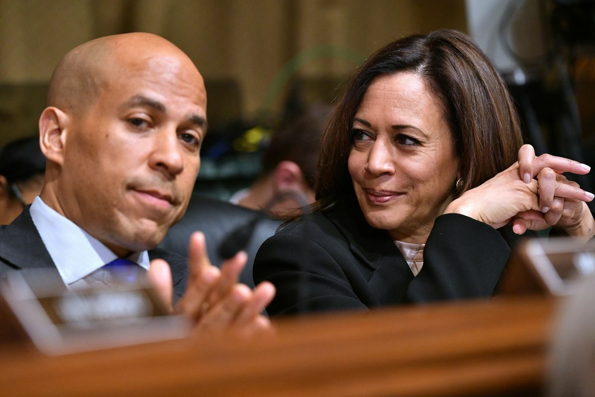Democratic Socialists continue slide into political gutter