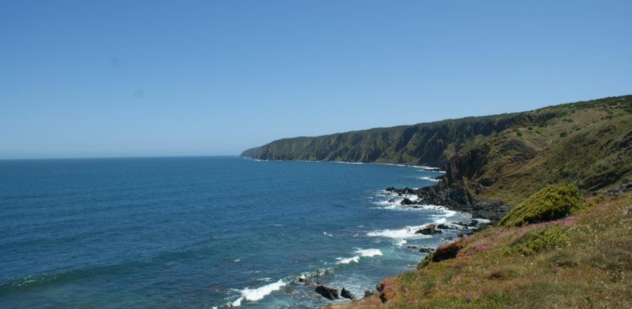 Newland Head to King Head