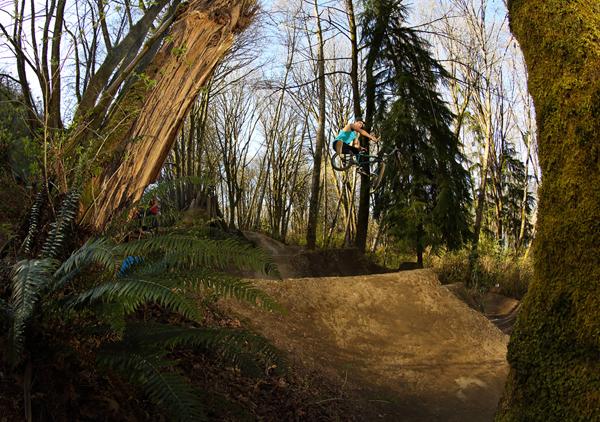 Brandon Van Dulken BMX
