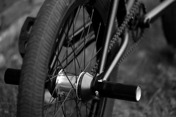 SeanRicany_bikecheck4_ByNickJones_600x