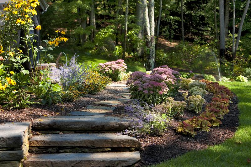 Monterey – summer display garden