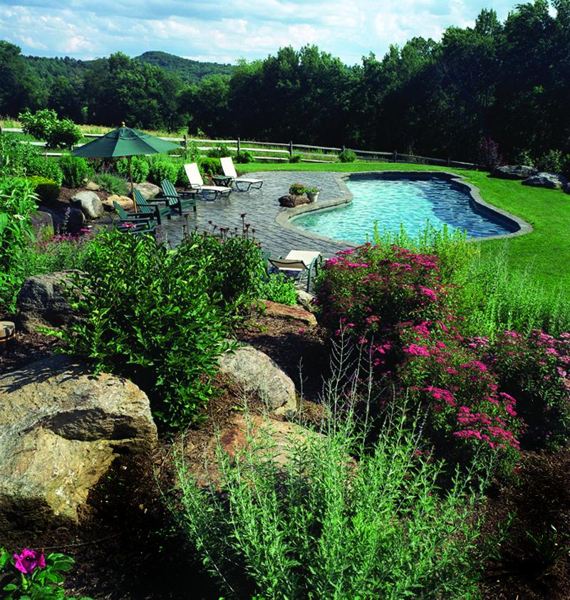 Sheffield – plunge pool 32′ x 12′ x 18′, stamped concrete terrace, mixed large boulder garden terraces