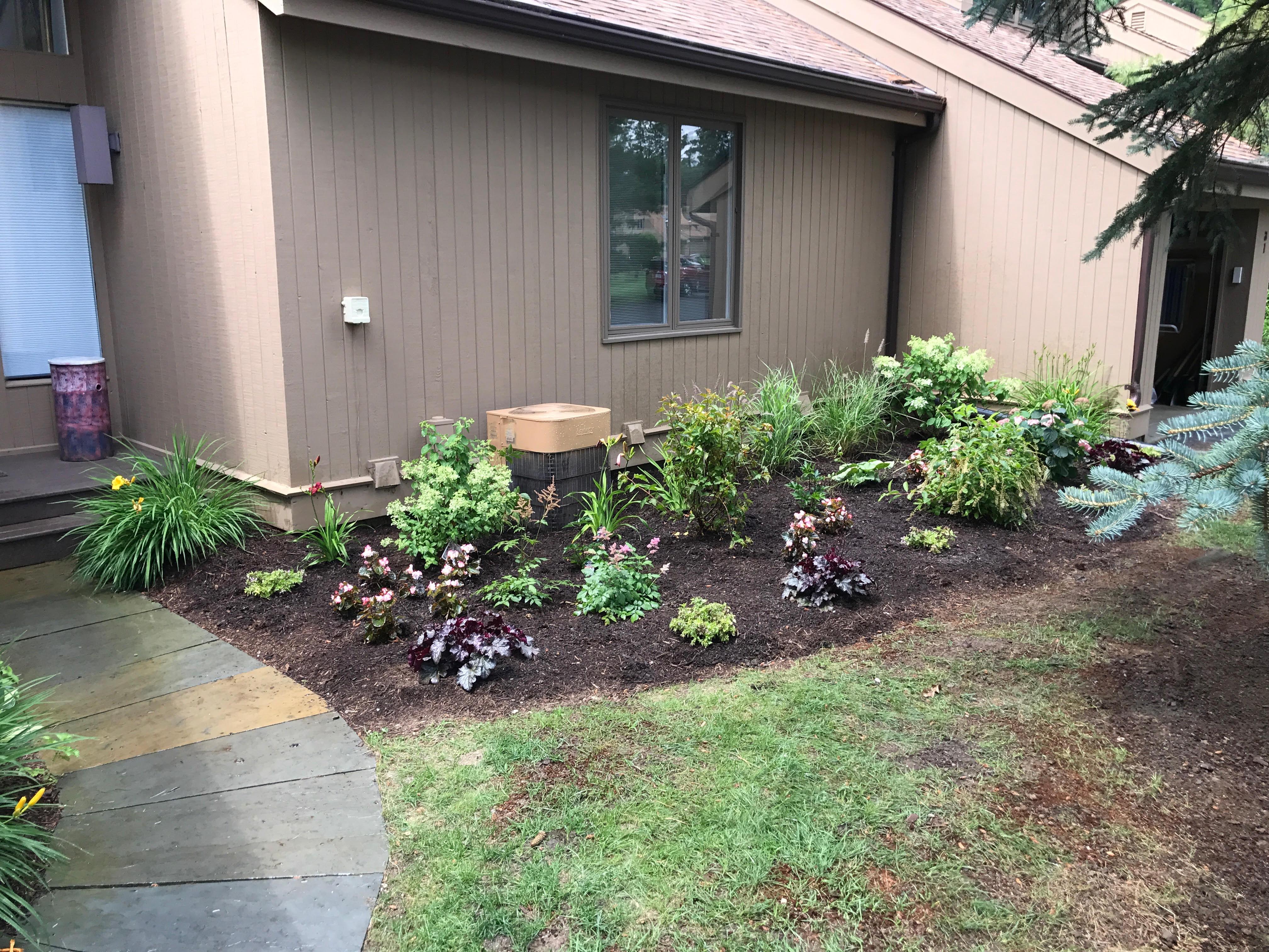 Nina's garden after 4