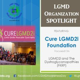 ORGANIZATION: CureLGMD2i Foundation
