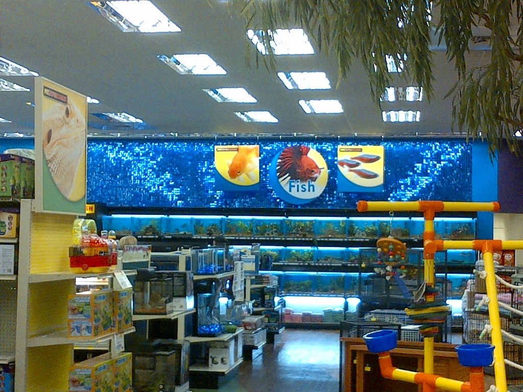 Pet Supermarket Coconut Creek SolaRay Sequin Wall 2 (1024x768).jpg