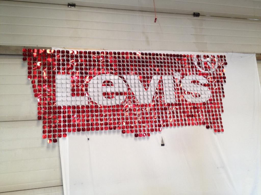 Levis logo (1024x768).jpg